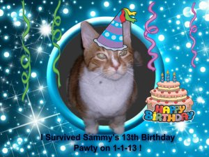 sambirthdaypartybadge