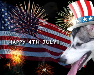 Happy 4th July to all my blogging friends :-)