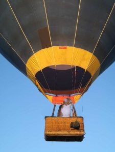hot-air-balloon - sammy
