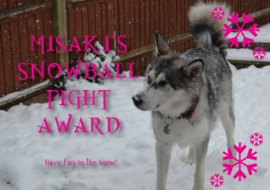 snowball fight award