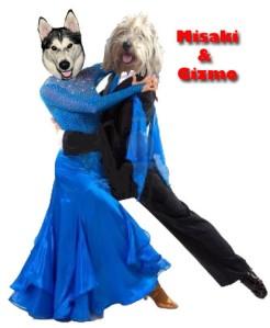Gizmo&Misaki