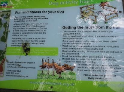 Dog agility course info