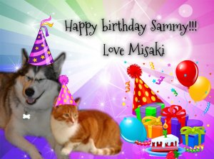Happy brithday Sammy