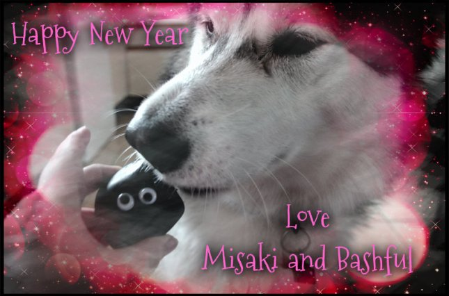 happy new year misaki and ba'#]sh