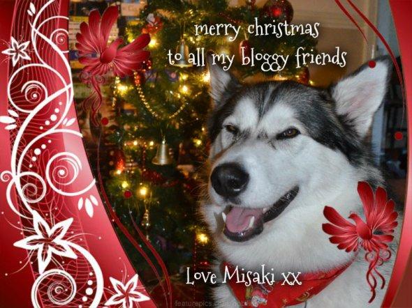 Misaki's Christmas card