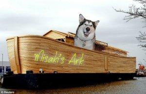 Misaki's ark