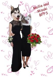 Mollie and misaki V ball pic