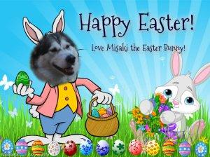 Misaki the Easter bunny
