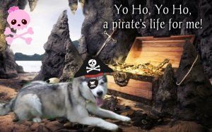 misaki the pirate2
