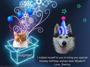 MISAKIBIRTHDAY